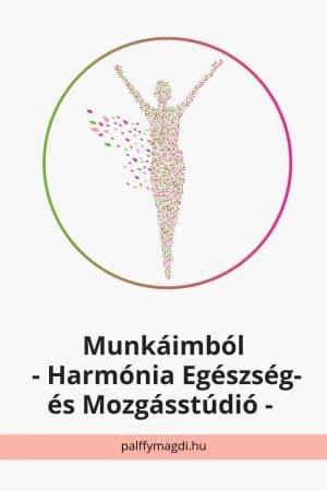 Hamónia Egészszég- és Mozgásstúdió